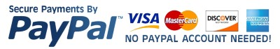 Secure payments for PayPal no PayPal account needed